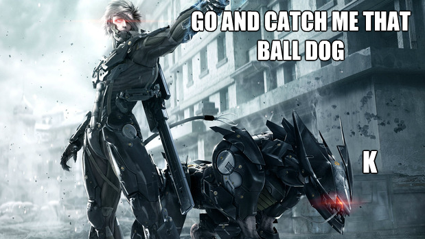 Metal Gear Rising meme