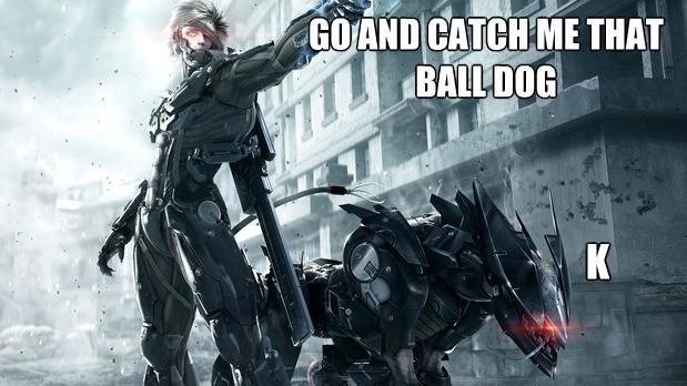 Metal Gear Rising meme