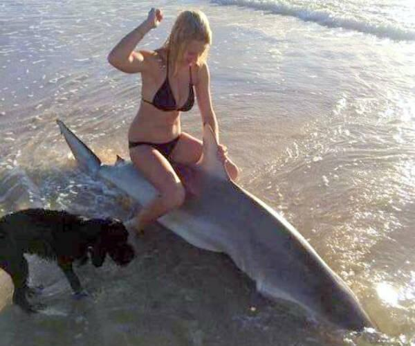 Fille-Requin-Mort-Rodeo