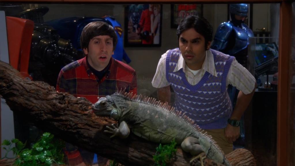 The Big Bang Theory Saison 8 Épisode 07-2