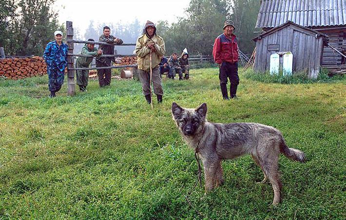 Karina-Kyraachan-Siberie-1