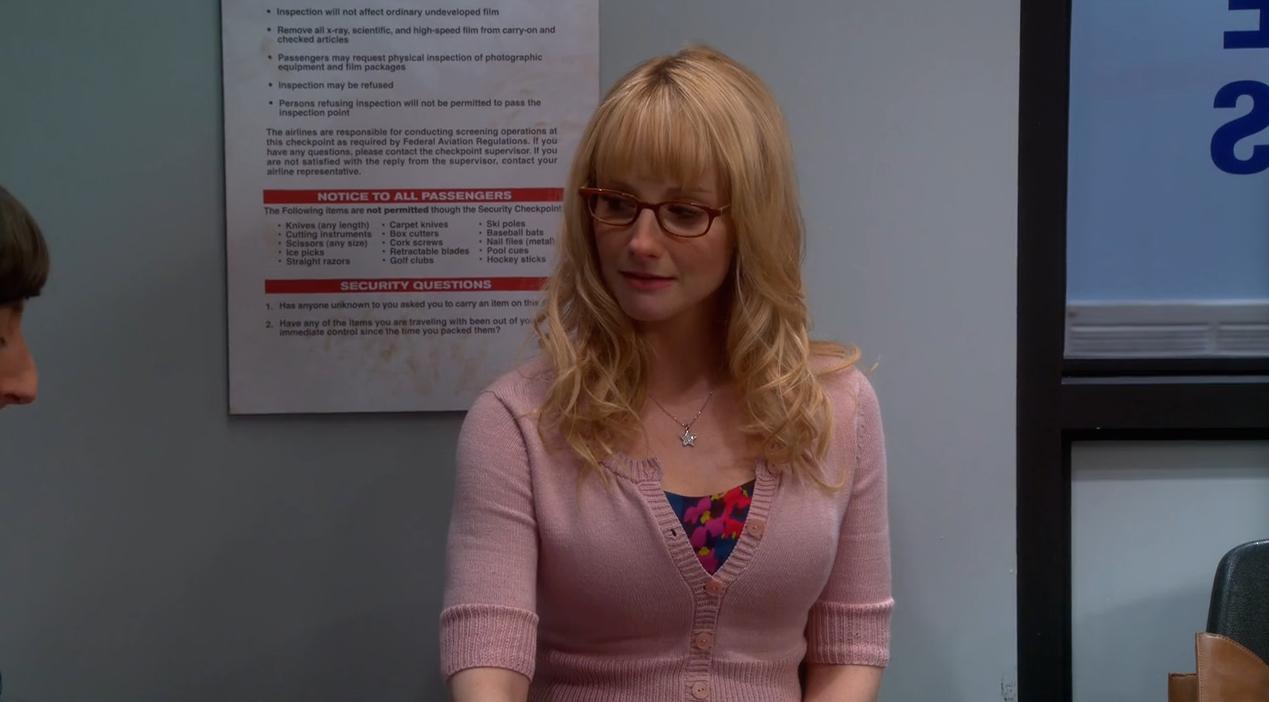 The Big Bang Theory Saison 8 Épisode 16-2