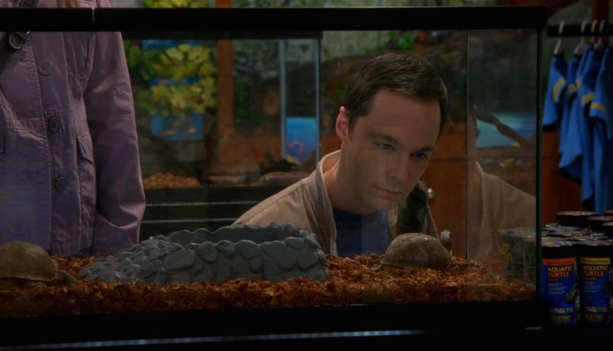 The Big Bang Theory Saison 8 Épisode 17-2