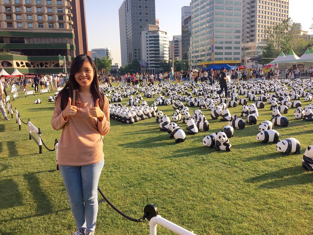 1600-Pandas-Coree-Sud-2