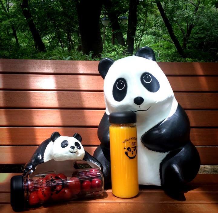 1600-Pandas-Coree-Sud-6