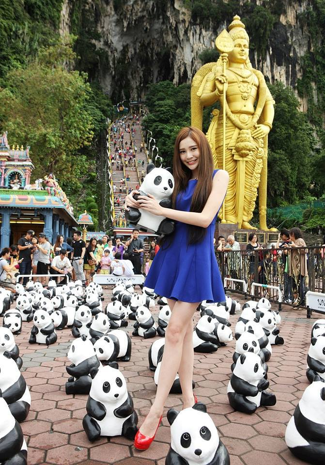 1600-Pandas-Malaisie-5
