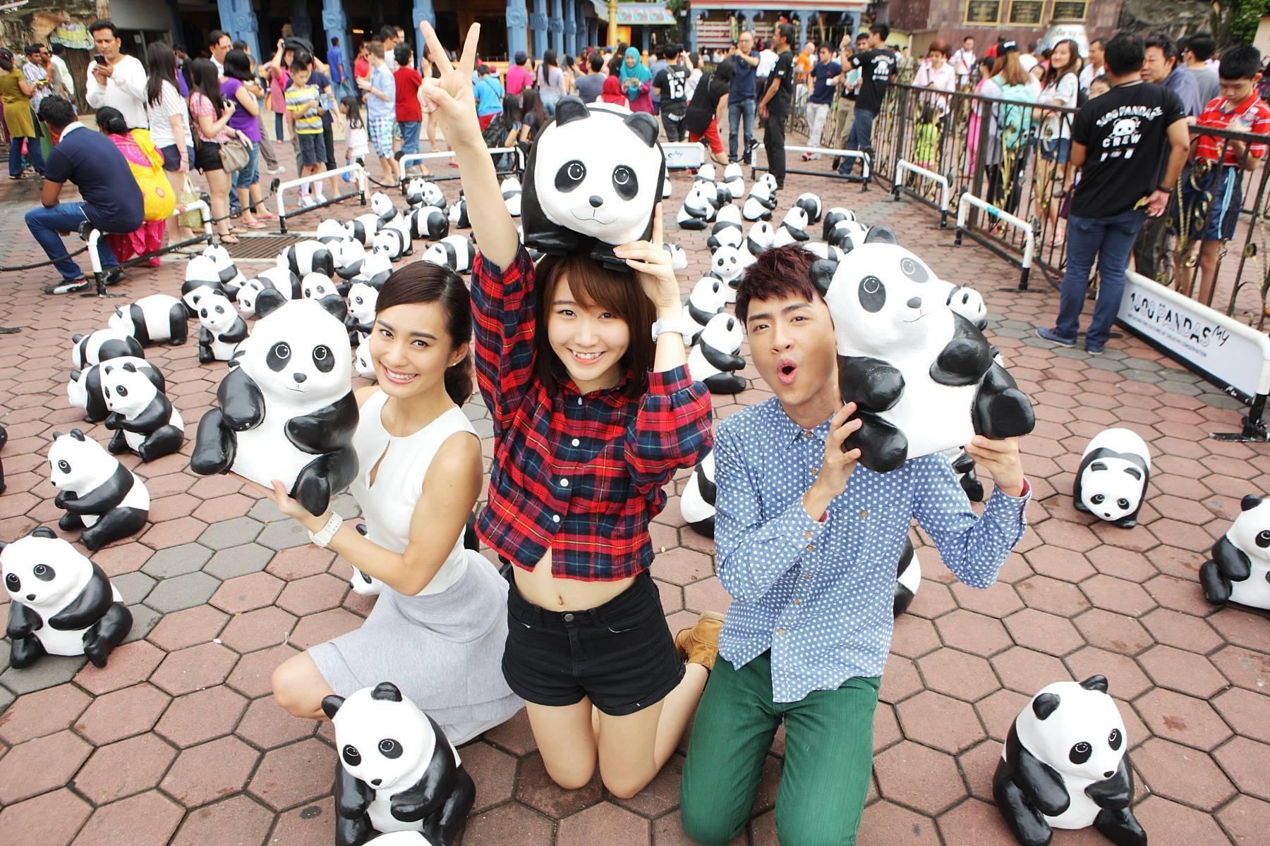 1600-Pandas-Malaisie-8