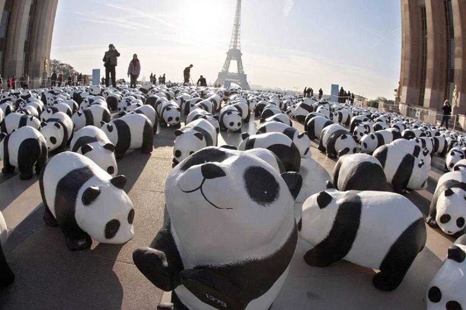 1600-Pandas-Paris