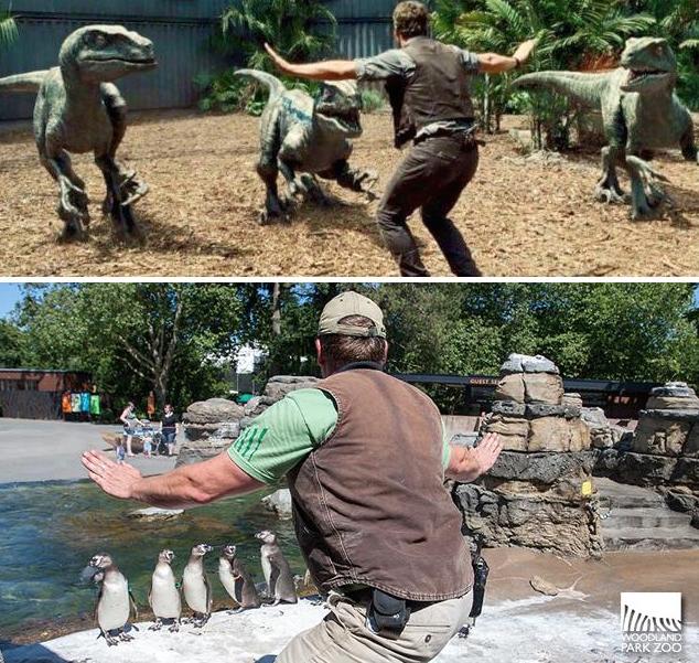 Jurassic-Zoo-World-14