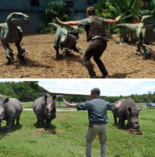 Jurassic-Zoo-World-7