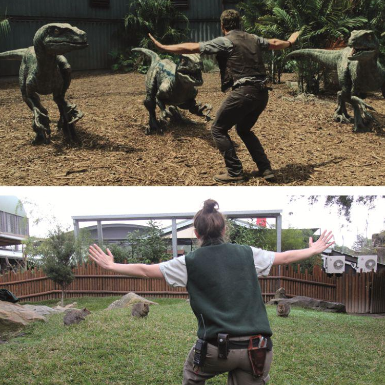 Jurassic-Zoo-World-9