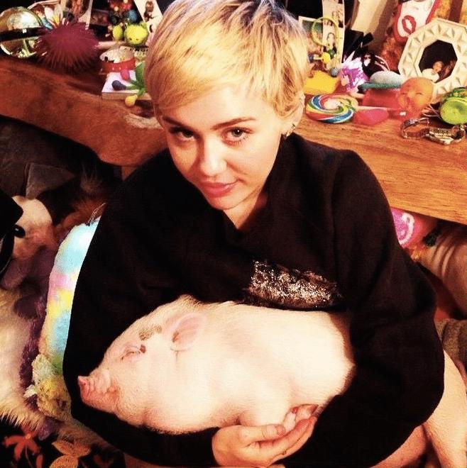 Miley-Cyrus-Booba-Sue-3