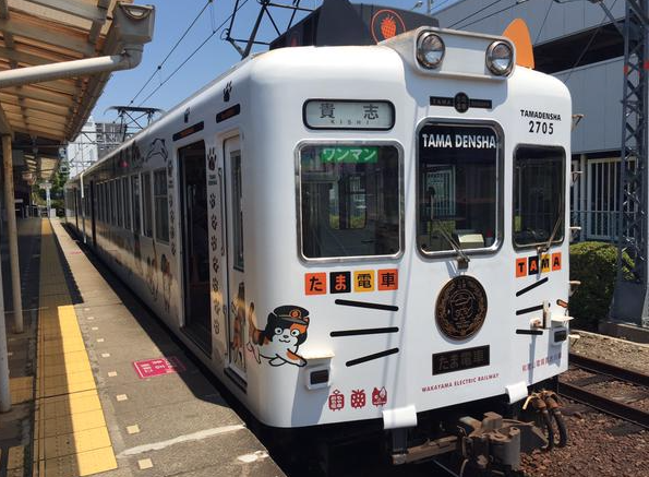 Tama-Chat-Gare-Japon-5