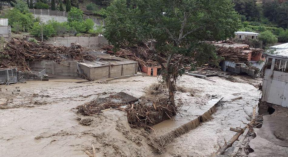 Tbilissi-Inondations-Zoo-Georgie-9