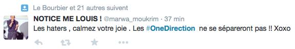 One-Direction-Break-2