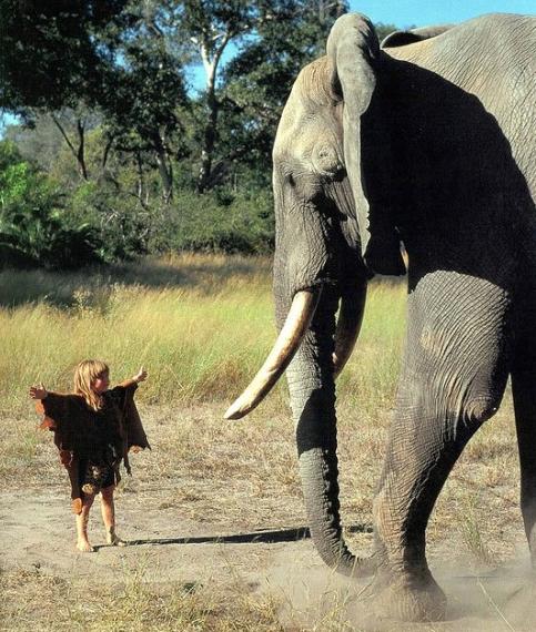 Tippi-Degre-Mowgli-12