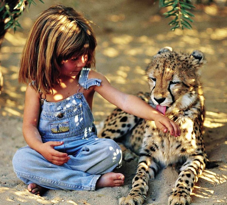 Tippi-Degre-Mowgli-16