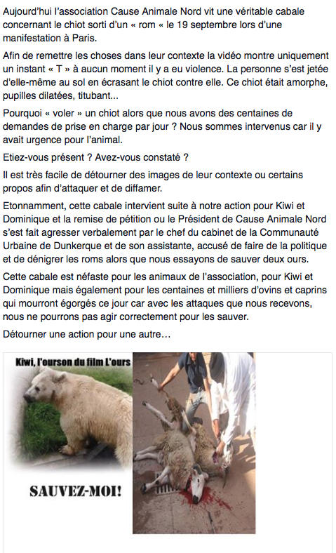 Cause-Animale-Nord-Vol-Chien-2