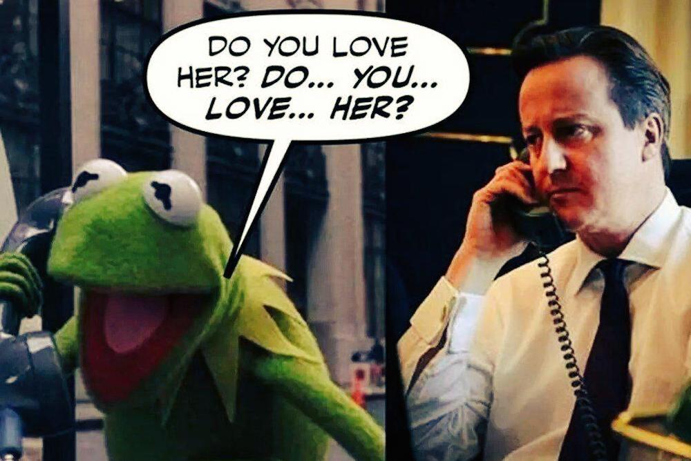 David-Cameron-Cochon-Pig-Gate-7