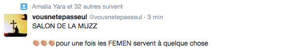 Femen-Salon-Musulman-Val-Oise-2
