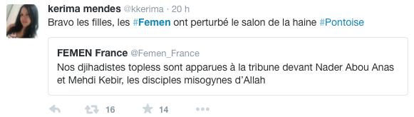 Femen-Salon-Musulman-Val-Oise-6