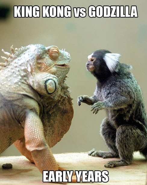 Godzilla-VS-King-Kong-2
