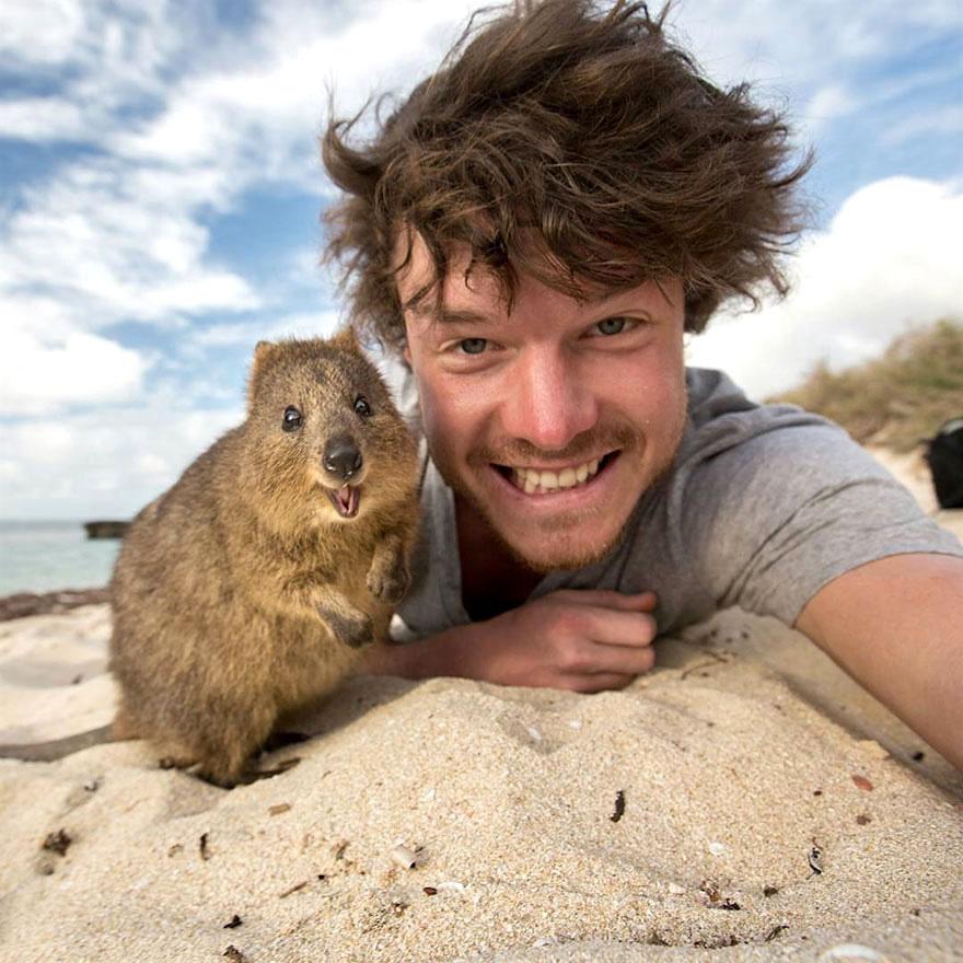 Allan-Dixon-Selfies-Animaux-12