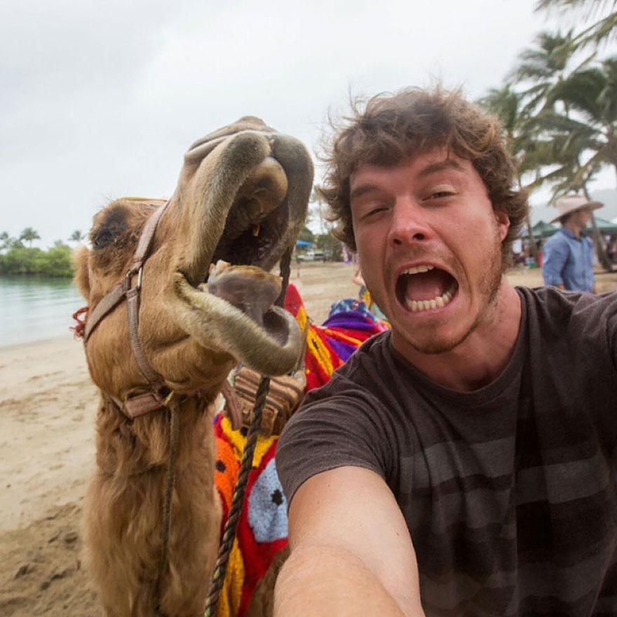 Allan-Dixon-Selfies-Animaux-14