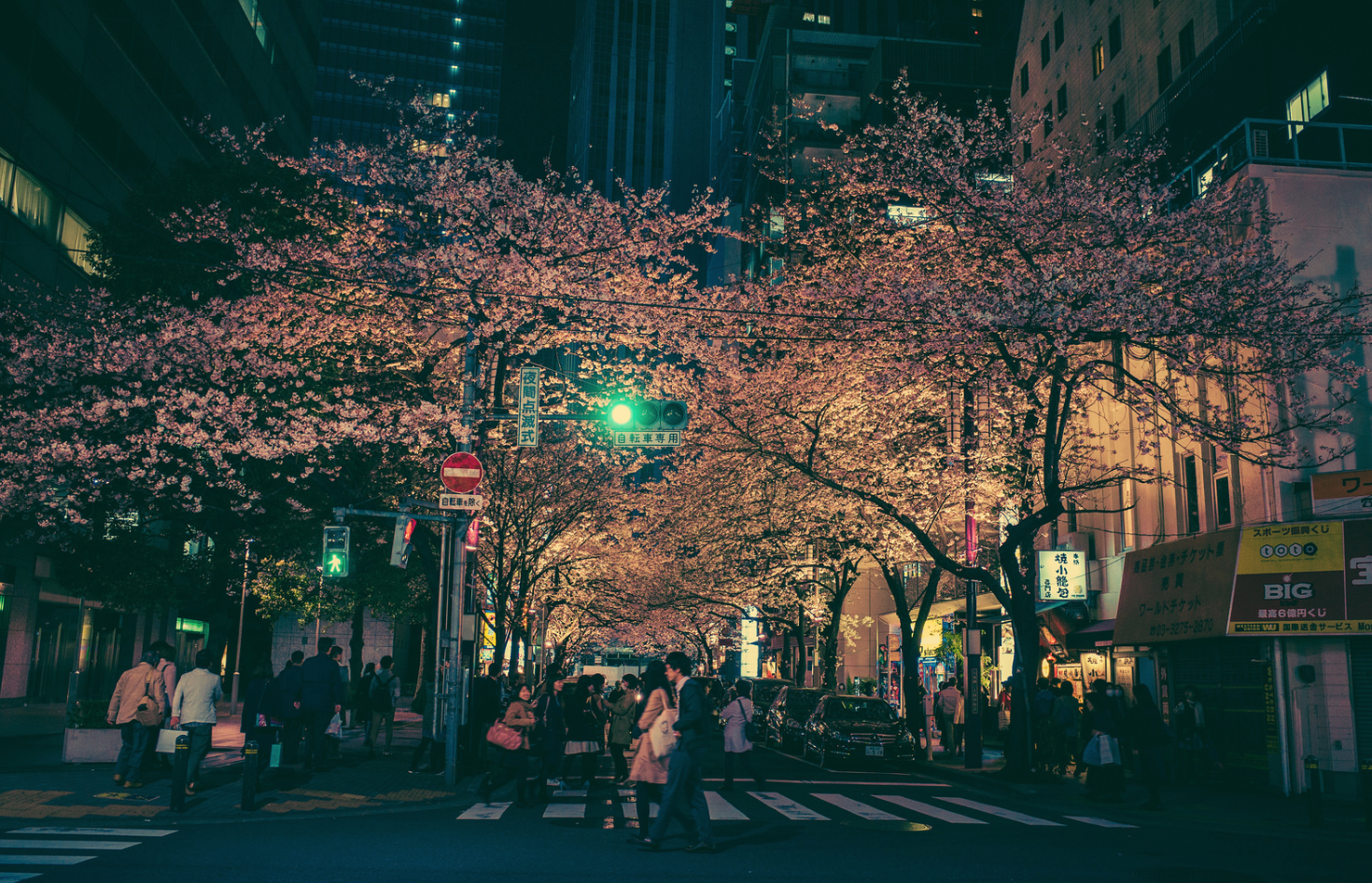 Tokyo-Nuit-17