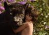 Le Livre de la Jungle : «Si quelque chose arrive à ce gosse, je ne me le pardonnerai jamais»