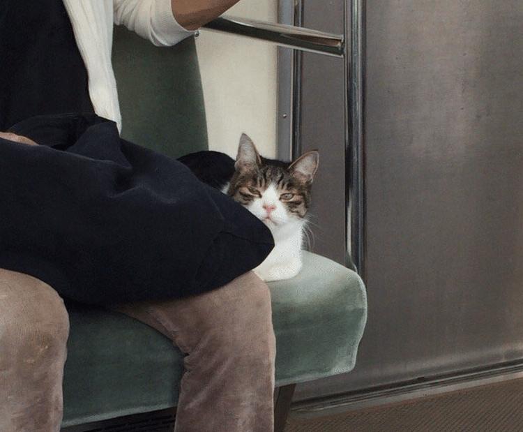 Kokoro-Metro-Tokyo-1-Bis-C