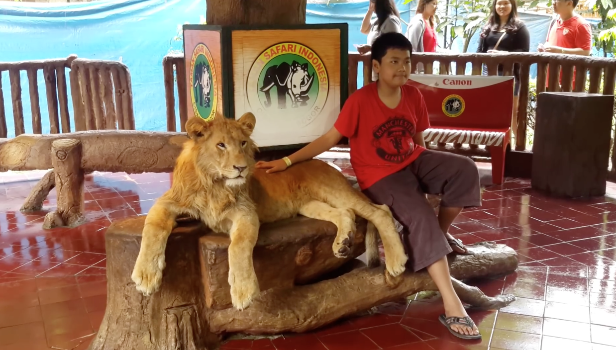 Lion-Drogue-Indonesie-4