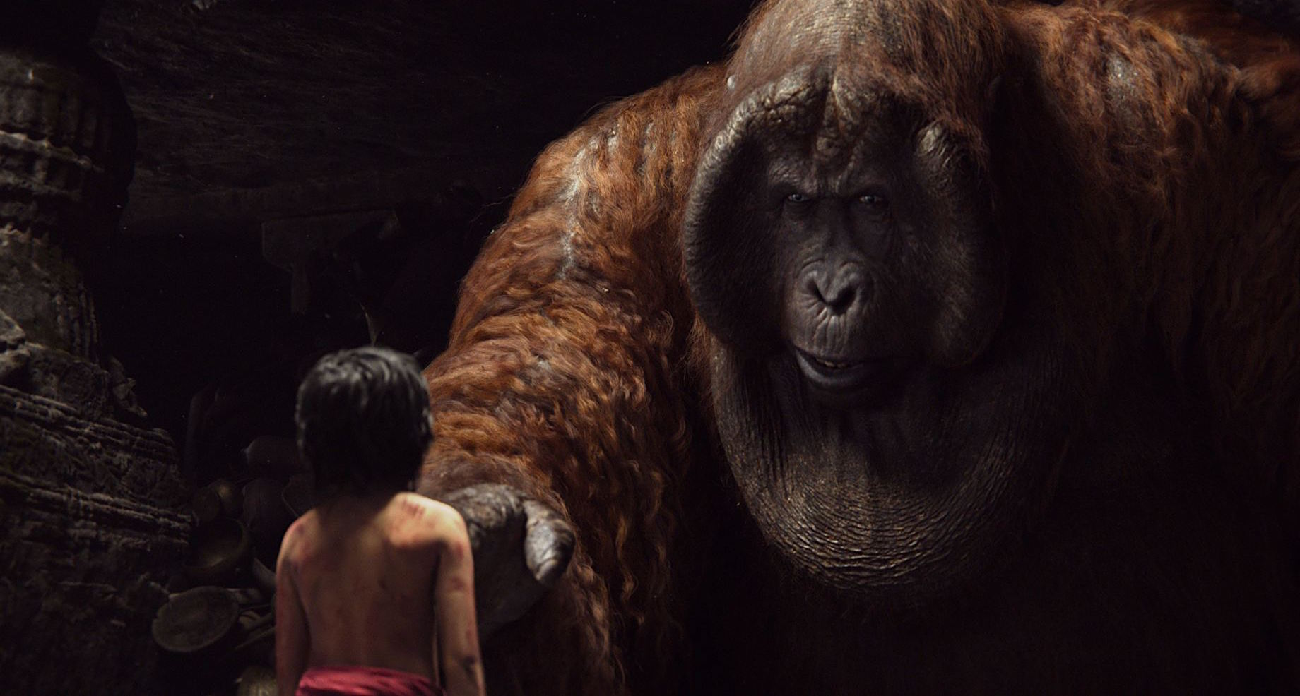Livre-Jungle-Review-2