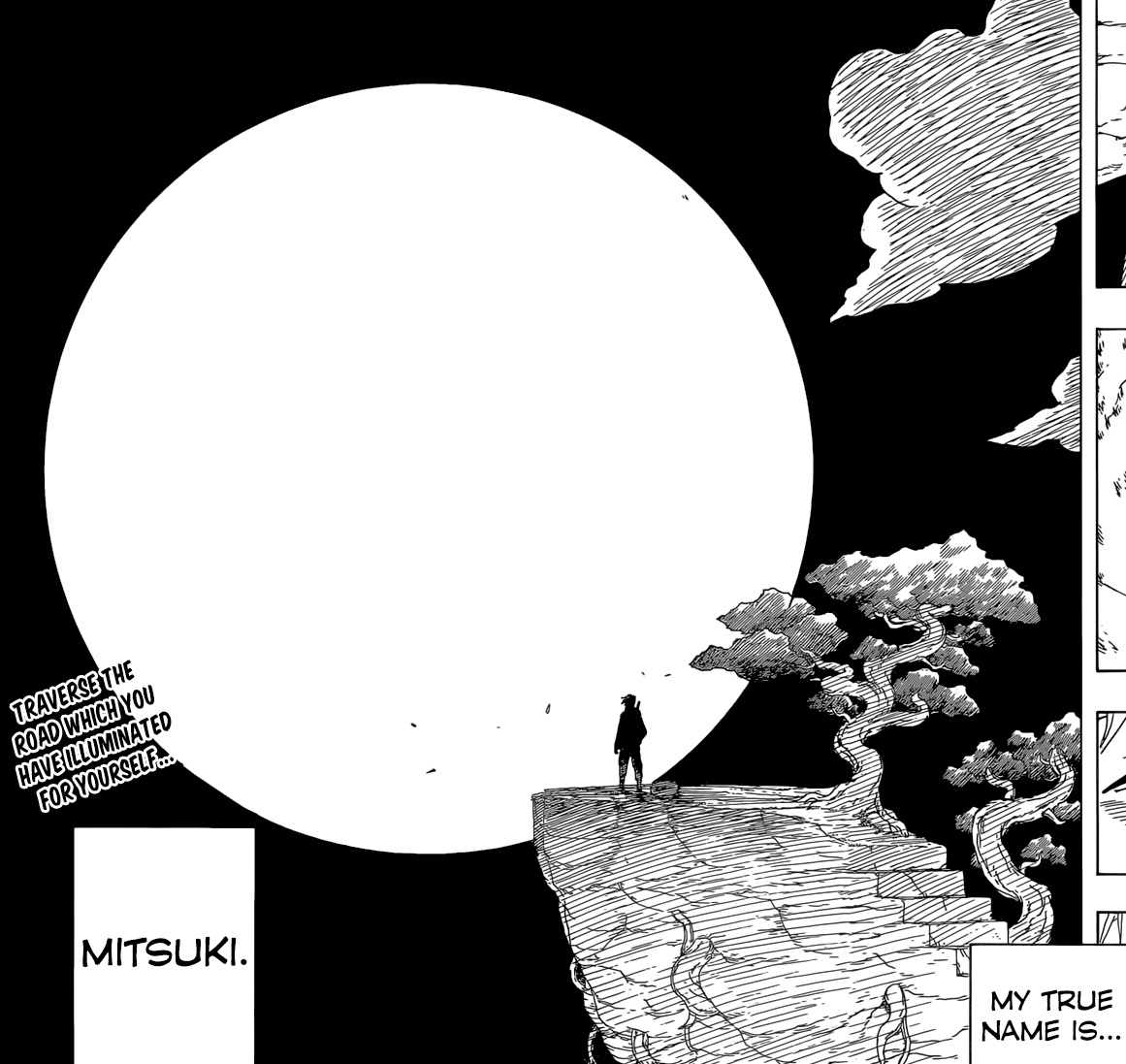 Naruto Side Story Mitsuki-4