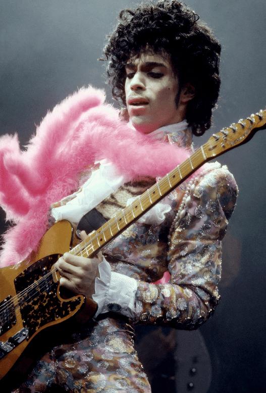 Prince-In-Memoriam-1