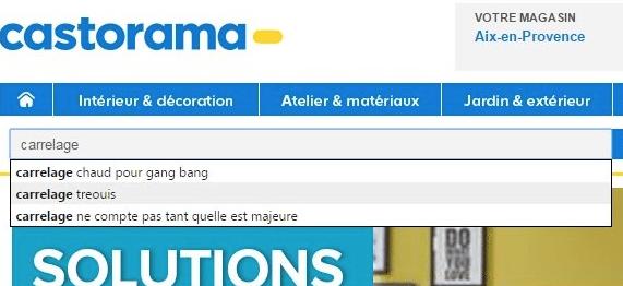 Castorama-Moteur-Recherche-10