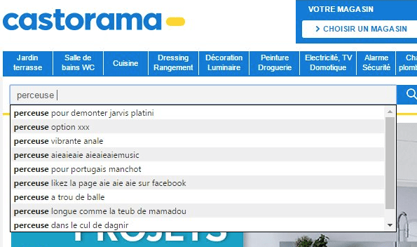 Castorama-Moteur-Recherche-2