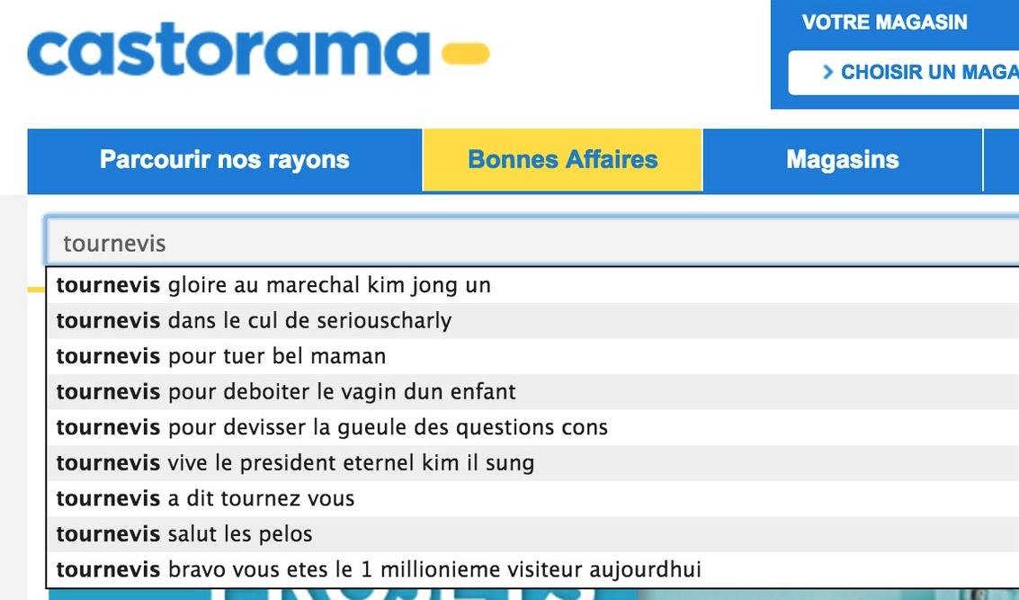 Castorama-Moteur-Recherche-6