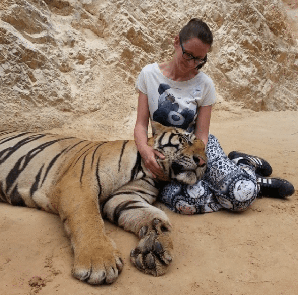 Temple-Tigre-Evacuation-Bebes-Tigres-3