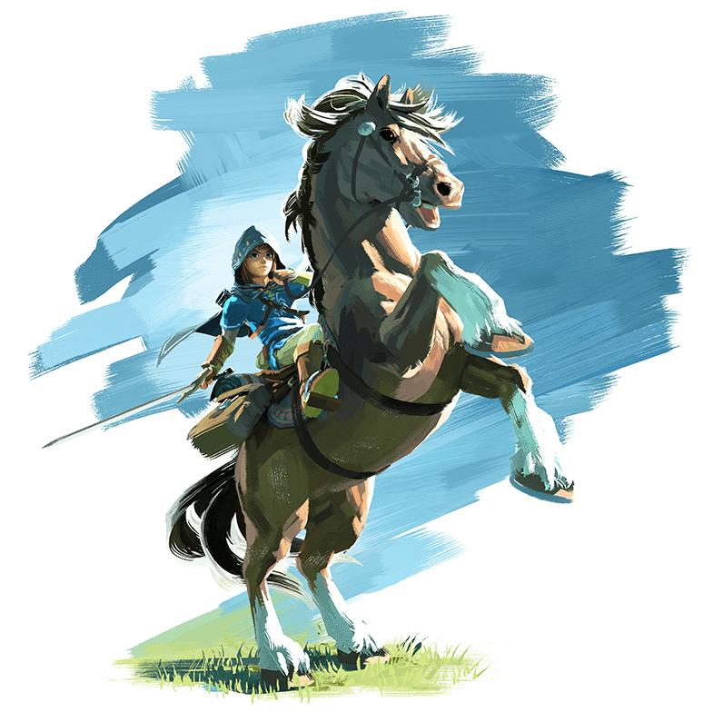 Zelda-NX-2