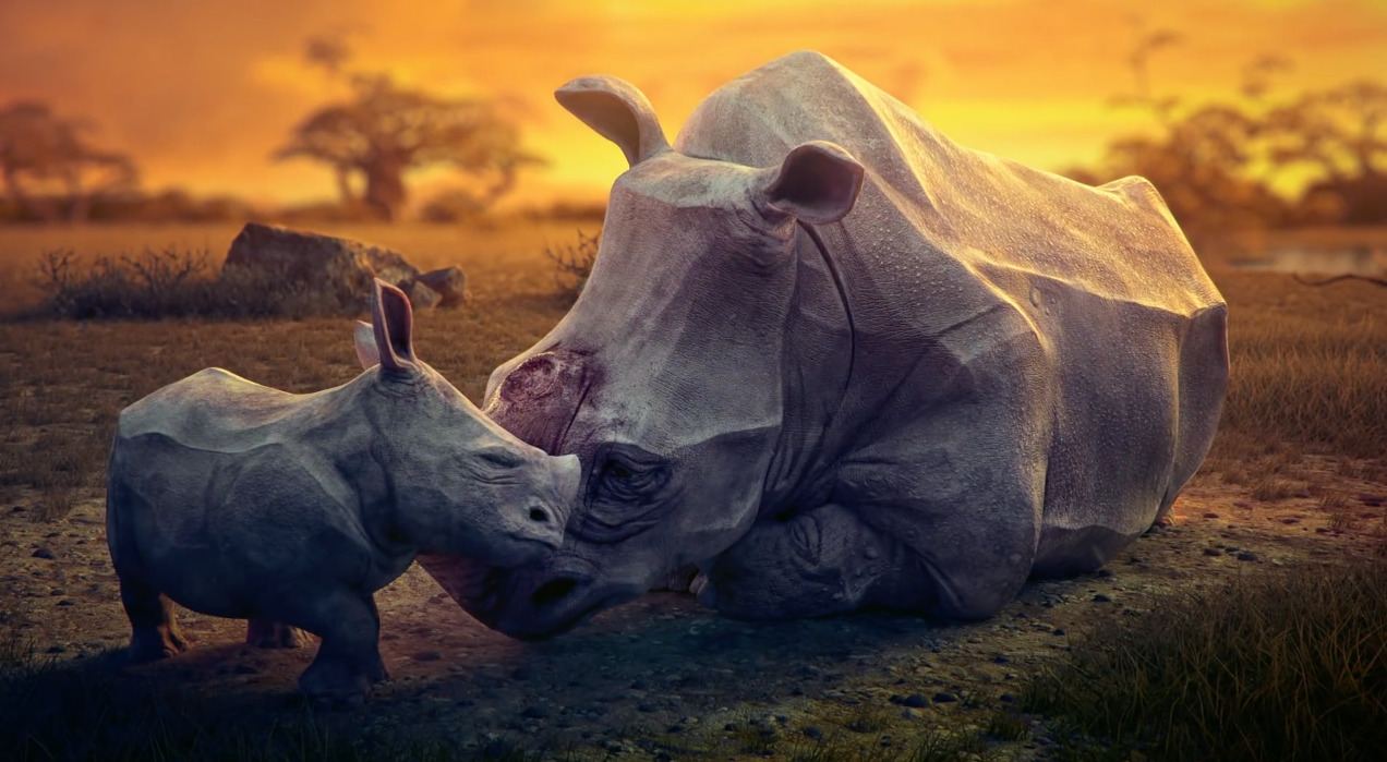 dream-animaux-5