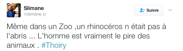 thoiry rhinoceros tue