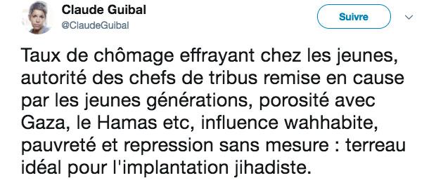 Groupes jihadistes