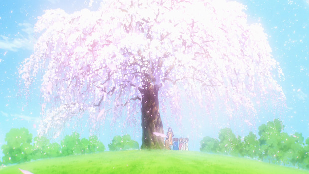 Pique-Nique Sous Les Cerisiers